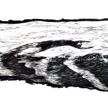 Mit den Wellen fliegen