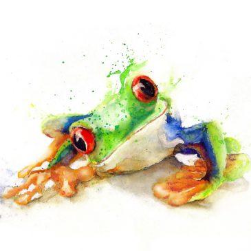 Signet  (Frosch)