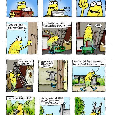 Wilmer legt los: Seite 1