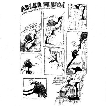 Adler flieg