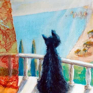 Katze am Mittelmeer